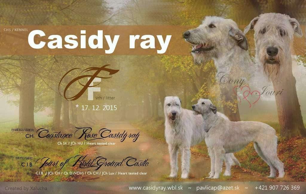 vrh_f_casidy-ray-2015
